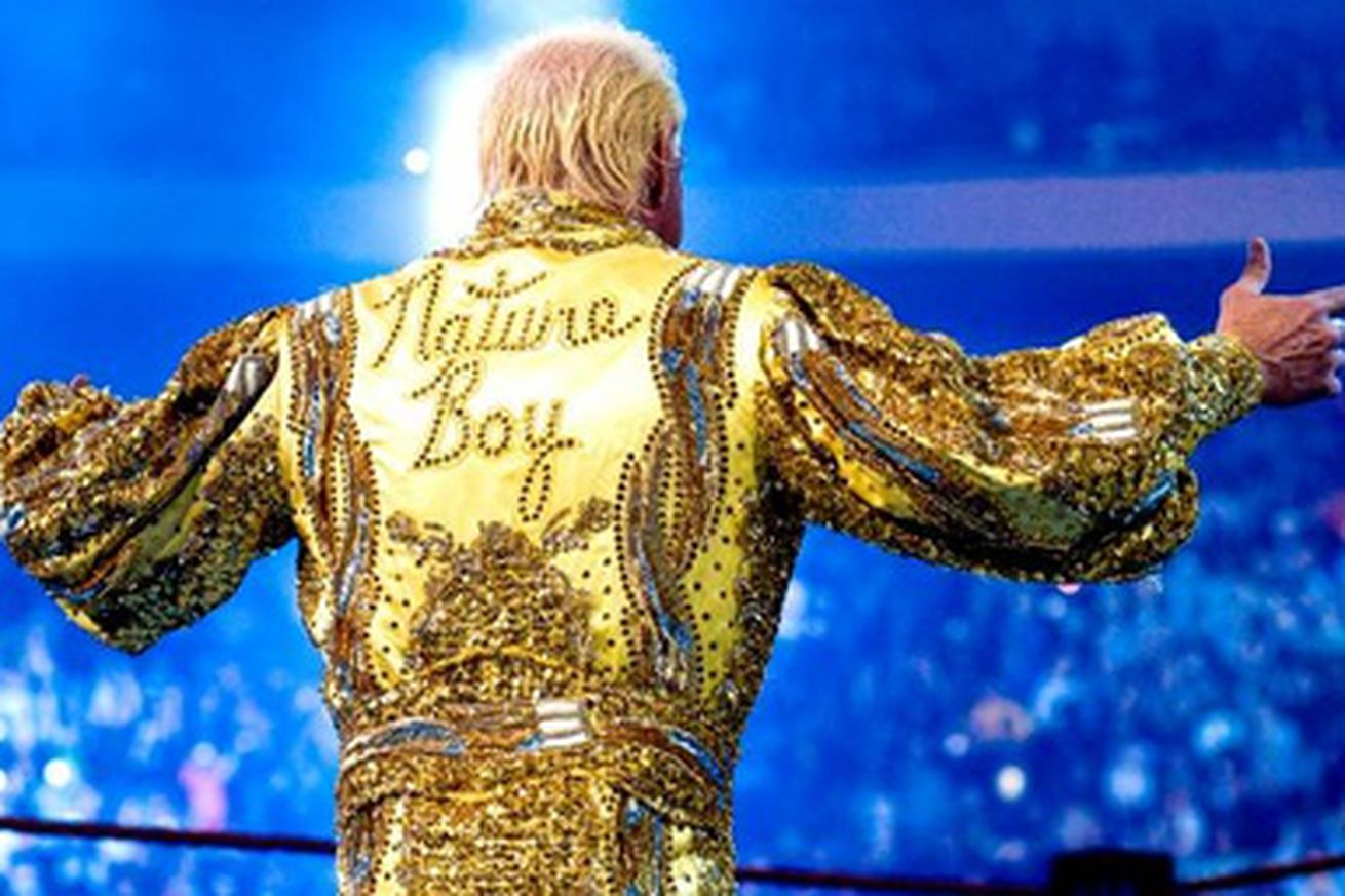 WWE Ric Flair Robe Back
