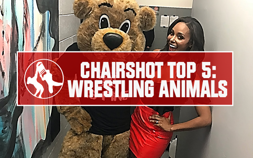 Brandi Rhodes Top 5 Wrestling Animals