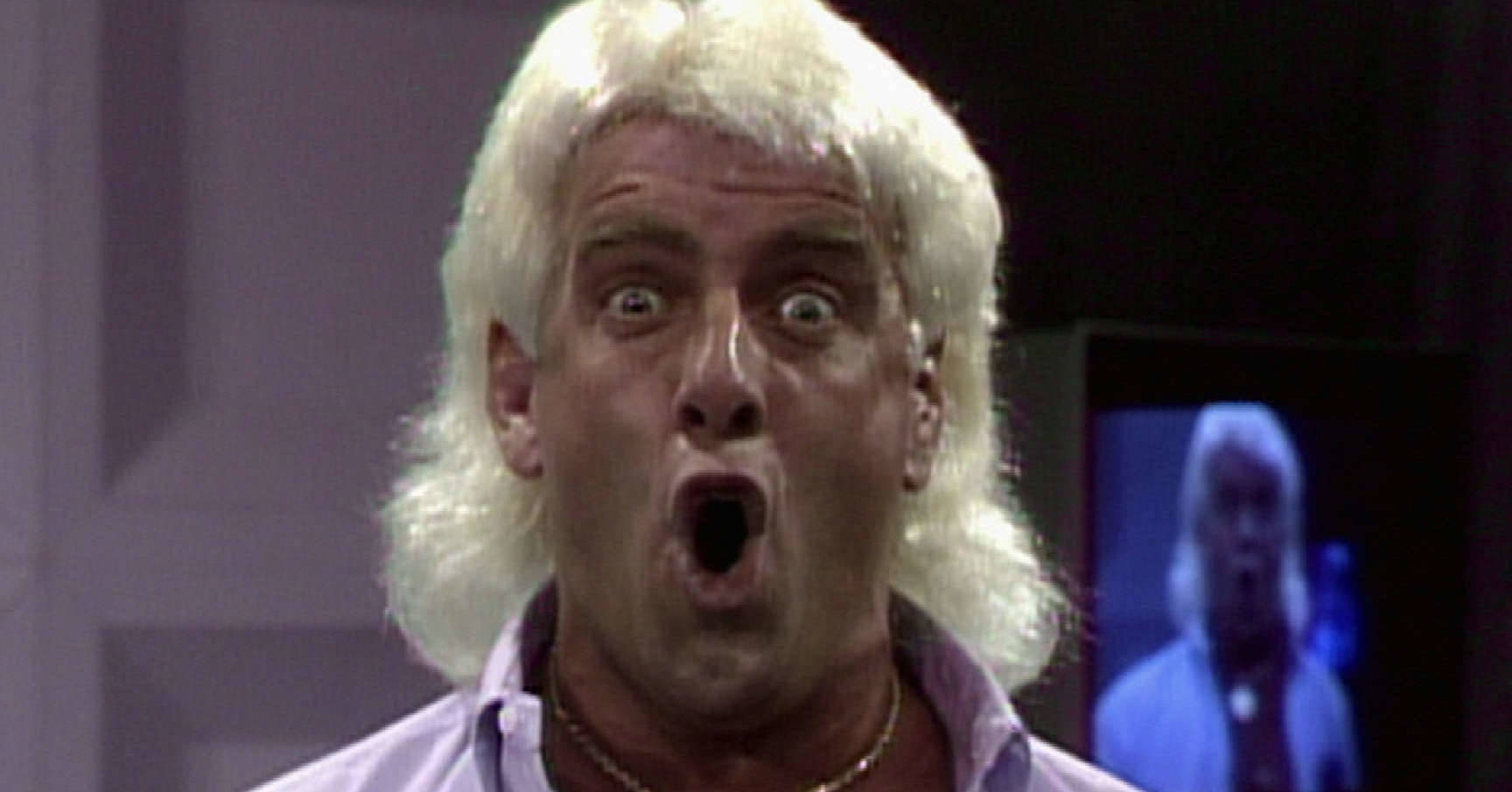 Ric Flair Heel WOOO