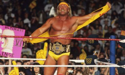 Hulk Hogan WWE WWF Winged Eagle